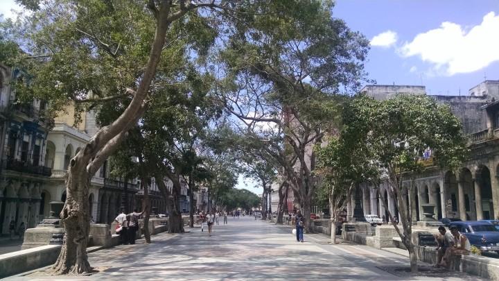 Paseo del Prado. photo: CHPC